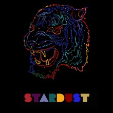 Stardust mixtape, compiled by DJ Al Fingers for Zakee Shariff, 2007
