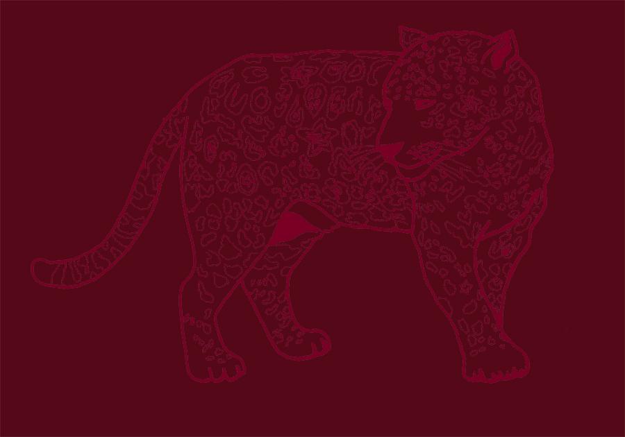 'Star Leopard', 2007. Zakee Shariff for Religion